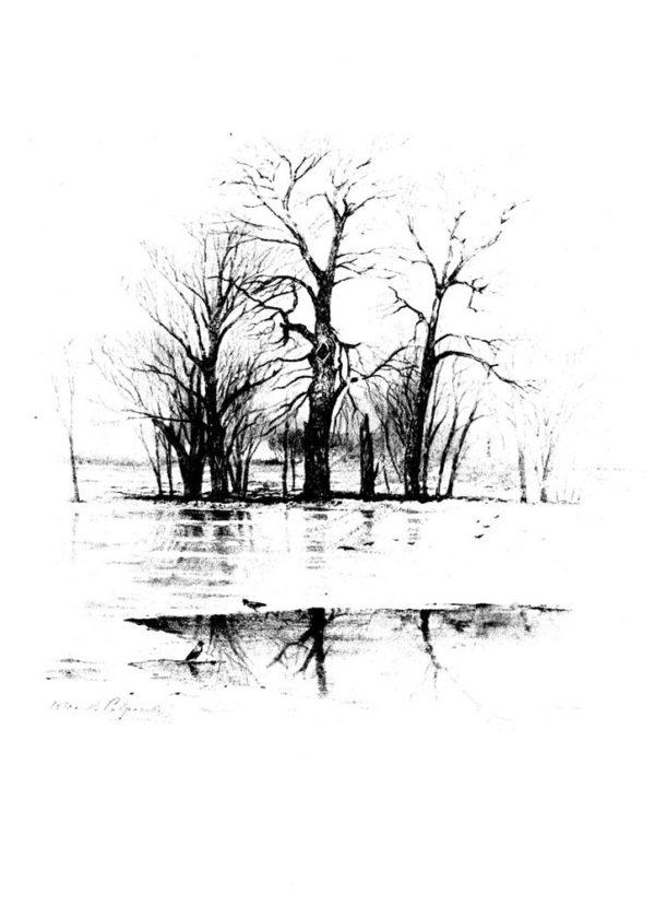 Старая открытка Весенний разлив