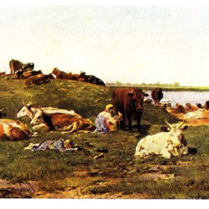 Старая открытка Стадо в поле