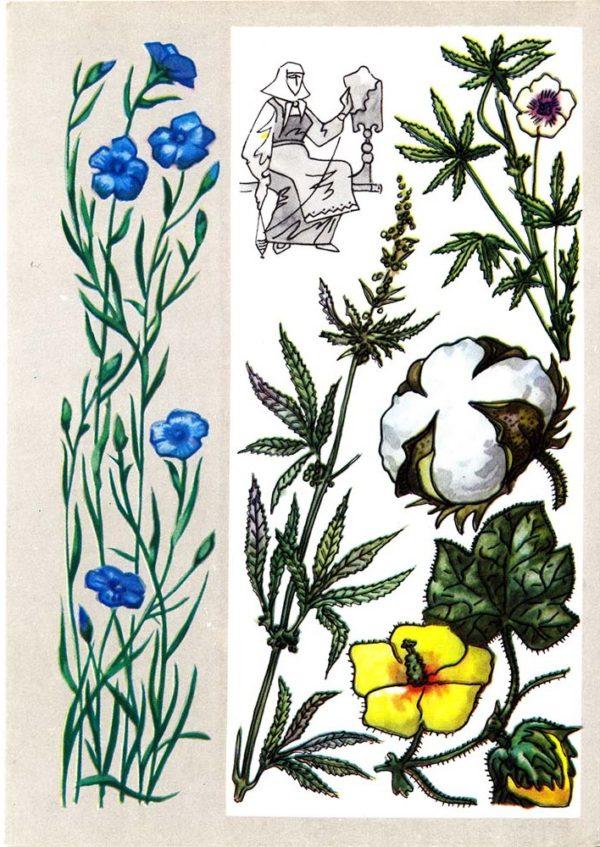 Волокнистые растения